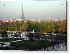 Paris Autumn Acrylic Print