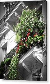 Paris Balcony Acrylic Print by Elena Elisseeva