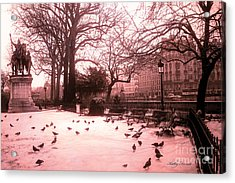Paris Charlemagne Notre Dame Cathedral Courtyard - Paris Dreamy Pink Notre Dame Statue With Pigeons  Acrylic Print by Kathy Fornal