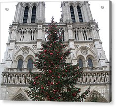 Paris Christmas Photography - Notre Dame Cathedral Christmas Tree - Paris At Christmas Acrylic Print by Kathy Fornal