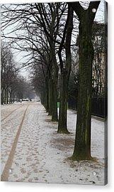 Paris France - Street Scenes - 011326 Acrylic Print by DC Photographer