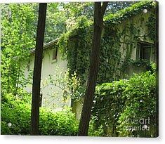 Paris - Green House Acrylic Print