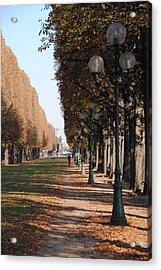 Paris Peaceful Afternoon Acrylic Print by Jacqueline M Lewis