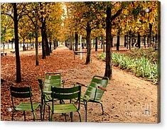 Paris Tuileries Gardens And Trees - Jardin Des Tuileries Gardens Parks Autumn - Paris Fall Autumn Acrylic Print