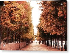 Paris Tuileries Row Of Trees - Jardin Des Tuileries Autumn Fall Colors Tree Landscape  Acrylic Print