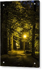 Acrylic Print featuring the photograph park Alley by Jaroslaw Grudzinski