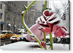 Park Avenue Rose In The Snow Acrylic Print by Diane Lent