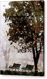 Park Benches Acrylic Print by Carol Leigh