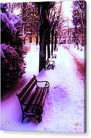 Park Benches In Snow Acrylic Print by Nina Ficur Feenan
