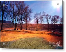 Park In Mcgill Near Ely Nv In The Evening Hours Acrylic Print by Gunter Nezhoda