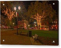 Park Scene Acrylic Print