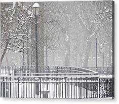 Park Snow Acrylic Print by James Dolan