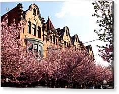 Acrylic Print featuring the photograph Philadelphia Parkside  by Christopher Woods
