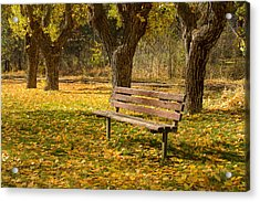 Acrylic Print featuring the photograph Parkside by Randy Wood