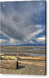 Parksville Beach - Low Tide Acrylic Print by Randy Hall