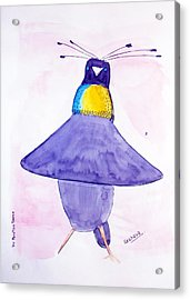 Parotia Dancing - Bird Of Paradise Acrylic Print