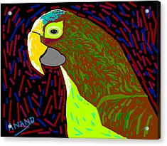 Parrot-3 Acrylic Print by Anand Swaroop Manchiraju