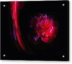 Parrot And Paeony Illusion Acrylic Print