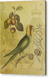 Parrot With Plums Acrylic Print by Sarah Vernon