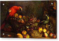 Acrylic Print featuring the digital art Parrots by Tobias Stranover