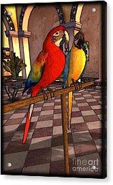 Parrots1 Acrylic Print by Susanne Baumann