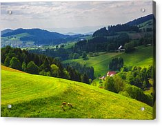 Partly Sunny At Black Forest Acrylic Print