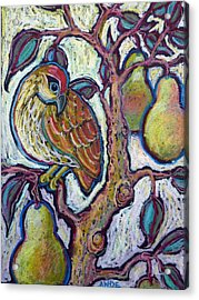 Partridge In A Pear Tree 1 Acrylic Print by Ande Hall