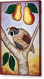 Partridge In A Pear Tree Acrylic Print by Linda Mears