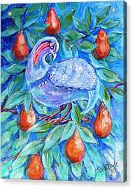 Partridge In A Pear Tree  Acrylic Print by Trudi Doyle