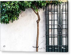 parts of Ronda Acrylic Print by Piet Scholten