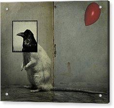 Party Animal  Acrylic Print by Jerry Cordeiro