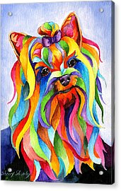Party Yorky Acrylic Print
