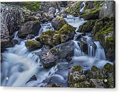 Pass Me By Acrylic Print by Ian Mitchell