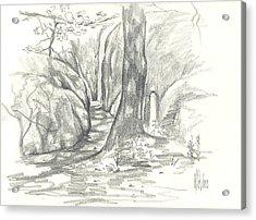 Passageway At Elephant Rocks Acrylic Print by Kip DeVore