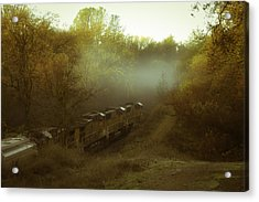Passing Through Auburn Acrylic Print