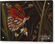 Passion Butterfly - Gulf Fritillary Acrylic Print