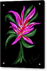 Acrylic Print featuring the digital art Passion Flower by Christine Fournier