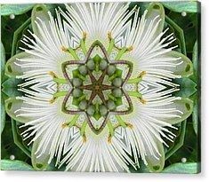 Passion Flower Mandala Acrylic Print