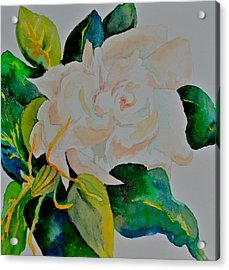 Acrylic Print featuring the painting Passionate Gardenia by Beverley Harper Tinsley
