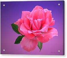 Acrylic Print featuring the photograph Passionate Pink by Joyce Dickens