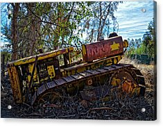 Past It's Prime Acrylic Print by Lynn Bauer