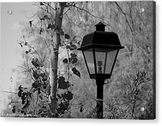 Acrylic Print featuring the photograph Past N Present by Elaine Malott