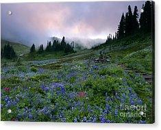 Pastel Mountain Dawn Acrylic Print by Mike Dawson