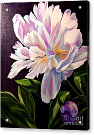 Pastel Peony Acrylic Print by Anne Barberi