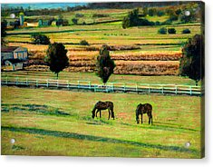 Pastoral Green Acrylic Print by Cindy McIntyre