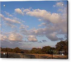 Pasture Clouds Acrylic Print by Susan Williams