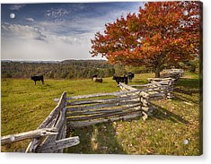 Pasture Fence Acrylic Print