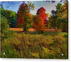 Acrylic Print featuring the photograph Pasture Gone Fallow by Dennis Lundell
