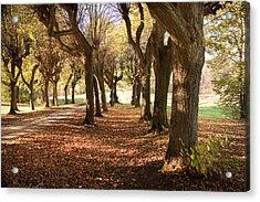 Path 1- Ostromecko Gardens Acrylic Print