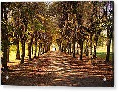 Path 3- Ostromecko Gardens Acrylic Print